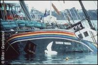 image courtesy of Greenpeace