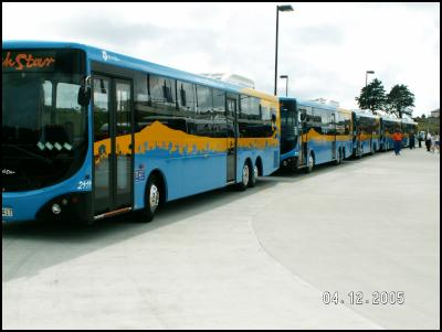 North Star buses
