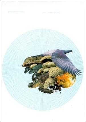 Artist: Peter Madden; Title: Just Growing Mushrooms