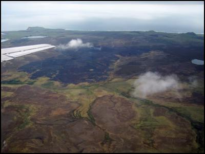 The remains of a fire in the Wharekauri (Greenswamp) Conservation Area on the Chathams. Photo Richard Gill/DOC.