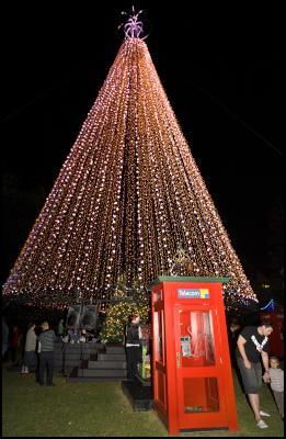 . The Telecom Tree