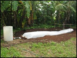 Polyethylene bag biodigester all complete, Tonga
