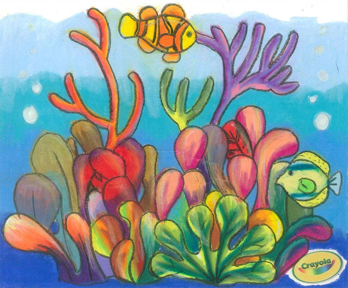 Fish tank drawing pictures - Click To Enlarge Winning Coral Drawing By Nine Year Old Lana Armand From Napier