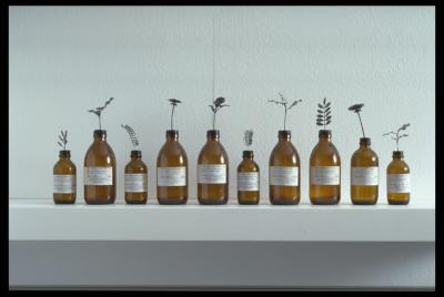 Areta Wilkinson draws on her experience of illness and recovery in a work called The Herbal Mixture
