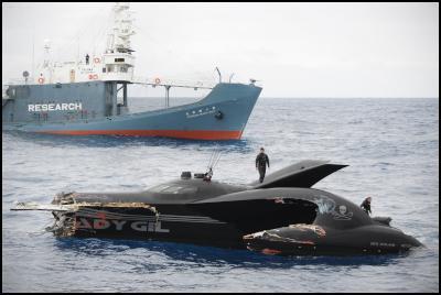 Ady gill, Shonan Maru No. 2 collision