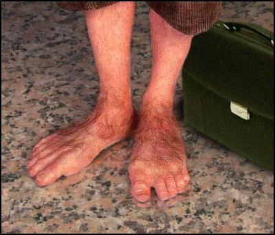 hairy hobbit feet with a briefcase