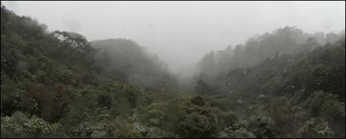 Hills and forest - High resolution photos of Wellington snow, Karori. Pictures by Alexander Garside.