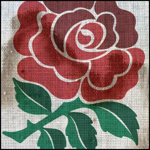England, rose, rugby, world cup, wet