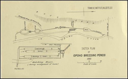 Hatchery Site Plan circa 1880