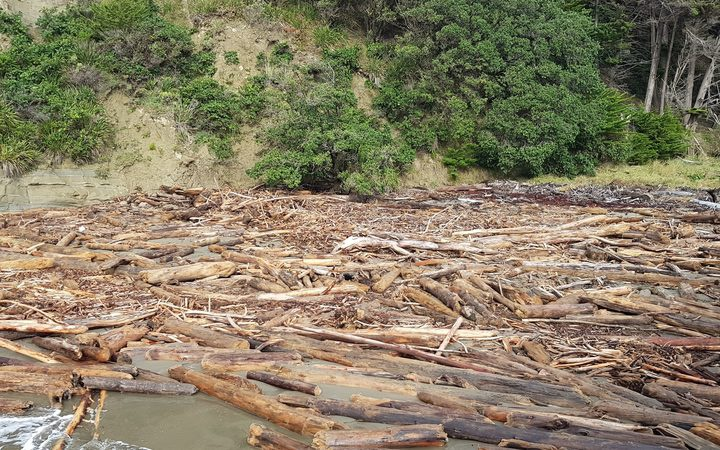 Slash debris after flooding in Tolaga Bay. Photo: RNZ / Emma Hatton