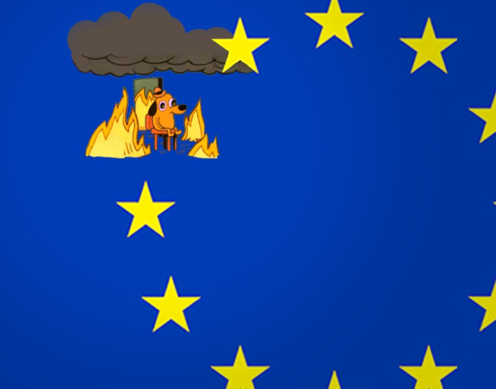 the EU flag but one of the starrs replaced by the dog that says 'this is fine' while everything is on fire