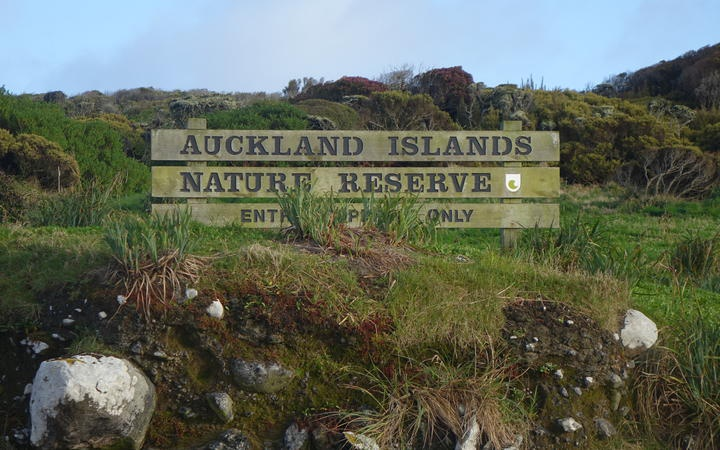 A sign for the Auckland Island Nature Reserve, at the top of a bank in low vegetation
