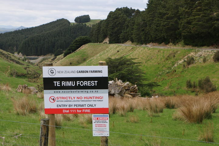 Sign for Te Rimu forest with grassed gully and pine forest behind