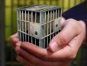corrections, prison