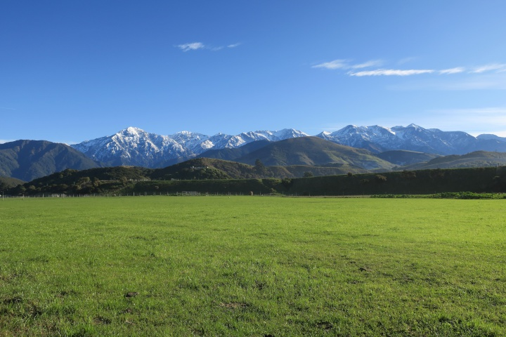 a green field with hills and snowy mountains in the background